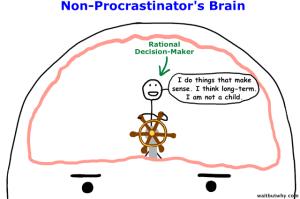 NP_brain